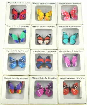 Magnetic Boxed Butterflies - 25 Designs -  (Pack Size 50)