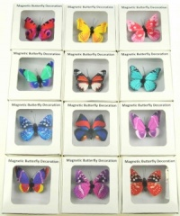 Magnetic Boxed Butterflies -  (Pack Size 50) - 30% OFF