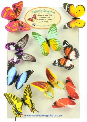 Magnetic Butterflies - 20 Designs - Mix Sets (Pack Size 40)