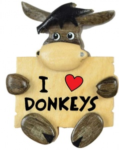 5043SDY-LV: I Love Donkey Magnets -  (Pack Size 36) Price Breaks Available
