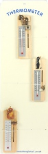 Themometer Display